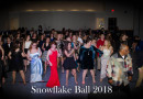 Scenes From MG Snowflake Ball